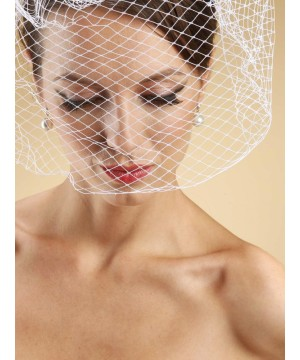 French Netting Birdcage Face Veil